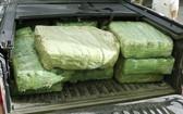 皮卡車上運毒被查獲,總重量達307公斤。(圖源:警方提供)