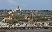 美國加州杭亭頓海灘油井採油設施。(圖源:互聯網)