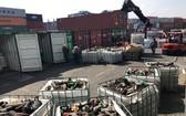 本市各職能機關當前仍在致力處理上千廢料集裝箱。(圖源:VGP)