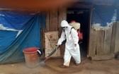 防疫人員在德農省達格隆縣廣和鄉的白喉病疫區進行噴霧消毒。(圖源:文成)