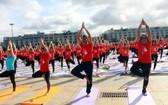 廣寧省「國際瑜伽日」活動。(圖源:互聯網)