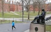 疫情下的美國哈佛大學校園。(圖源:CNN)