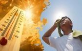 國家水文氣象預報中心預報:從清化至富安各省於今(14)日繼續出現酷熱和激烈炎熱天氣。(示意圖源:互聯網)