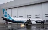 圖為一架波音737Max客機。(圖源:互聯網)