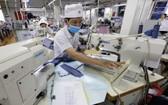 平陽紡織公司向外國出口產品。(圖源:陳越)