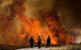 加州櫻桃谷地區發生野火。(圖源:AP)