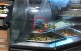 兩隻老鼠(紅圈示)爬在食品攤位盛放食物盤上覓食。(圖源:T.T.B)