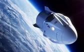 圖為 SpaceX 載人龍飛船。(圖源:NASA)