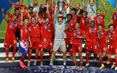 拜仁1-0巴黎奪冠。(圖源:互聯網)