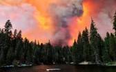 當地時間6日,美國加利福尼亞州的山火規模已達該州歷史最嚴重程度。(圖源:互聯網)