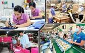民營經濟發展研究處建議給所有企業削減三成所得稅。(示意圖源:VOV)