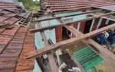 一間住房的鐵皮瓦被掀頂。(圖源:秋莊)