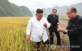 朝鮮國務委員會委員長金正恩(左一)親往颱風災區指導修復重建工作。(圖源:韓聯社)
