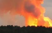 敘利亞多個省份9日發生近百起林火,造成2人死亡。