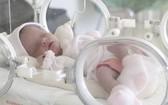 一名早產的新生嬰兒在加護病房接受特殊照護。