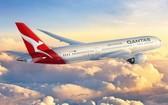 圖為澳航的一架客機在空中飛翔。(圖源:互聯網)