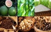 我國農產品逐步走出國門遠銷世界各地。(示意圖源:互聯網)