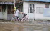 潮汛導致本市多條沿河街道受淹。(圖源:丁金)