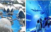 西班牙瓦倫西亞市中心的水族館。(圖源:互聯網)