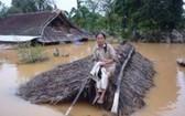 在一片汪洋的洪水之中,一名婦女坐在草屋頂上等待營救。(圖源:互聯網)