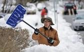 民眾清理積雪。(圖源:互聯網)
