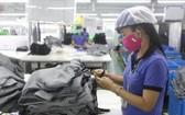 越南紡織品成衣業將加強開發歐盟市場。(圖源:互聯網)