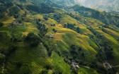 圖為獨特美景的沙巴山區。(圖源:Agoda)