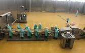 CPV Food 公司於日前正式投入運營東南亞最大雞肉加工廠組合。(圖源:清海)