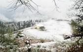 北部迎來寒潮,高山出現白雪皚皚。(圖源:TL)