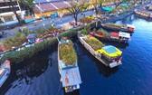 """第八郡平東碼頭的""""岸上船下""""春花市需要得到保護和發揮水文化遺產的價值。"""