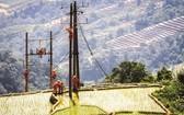 2020年8月,國家電網已覆蓋了河江省偏遠高山地區。(圖源:晉士)