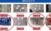 發售藍色、紅色假外交車牌的網站。