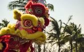 度假區將以醒獅迎新春。