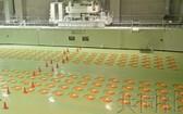 1月31日從共同社的問卷調查結果獲悉,關於核電站產生的高放射性廢棄物(核垃圾)的最終處理,日本全國市區町村中約八成對於接納處理場持否定態度。(圖源:共同社)