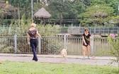 民眾帶著犬隻到饒祿-氏藝河畔公園(平盛郡第十九坊阮玉方街)大小便。