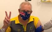 澳洲總理莫里森率先接種新冠疫苗。(圖源:互聯網)
