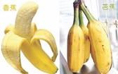 """""""香蕉和芭蕉""""長得很像  營養卻差很多"""