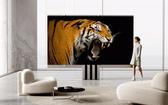 全球首款 165 英寸折疊電視亮相