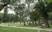 圖為第一郡黎氏簾公園一瞥。(圖源:清宇)