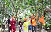 本市兒童旅遊團參觀前江省麟決堤。