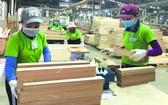 本市中小企業獲輔助恢復產銷活動。