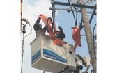 市電力總公司員工正在修繕電網。