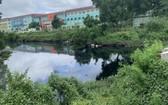 貫穿本市5個郡長達32公里的參良-濱桔河涌流域廢水排水系統尚待處理改善。(圖源:杜鸞)