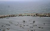 這是4月26日在加沙城海邊拍攝的漁船。(圖源:新華社)