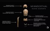 意大利羅馬南部的瓜塔里洞穴中出土9個尼安德特人的遺骸化石。(圖源:MIC)
