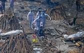 全球新冠肺炎死亡人數突破 400 萬人。(圖源:AFP)