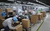 累計至今,北江省已有263家工業區企業復業。(圖源:秋莊)
