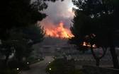 圖為8月7日,火舌濃煙直捲希臘北部半空的情形。(圖源:路透社)