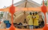 尼日利亞疾病控制中心8月10日證實,今年以來該國多地發生霍亂疫情,目前已導致816人死亡。(圖源:互聯網)