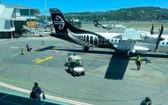 這是1月13日在新西蘭惠靈頓國際機場拍攝的新西蘭航空的客機。(圖源:新華社)